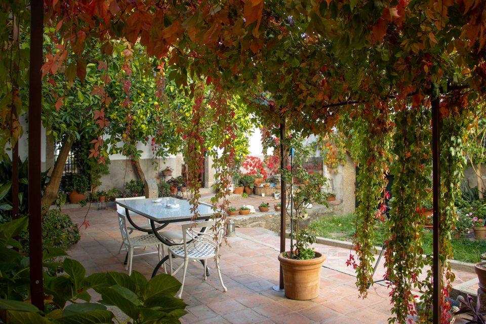 patio_antolina