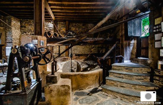 museo-del-aceite-molino